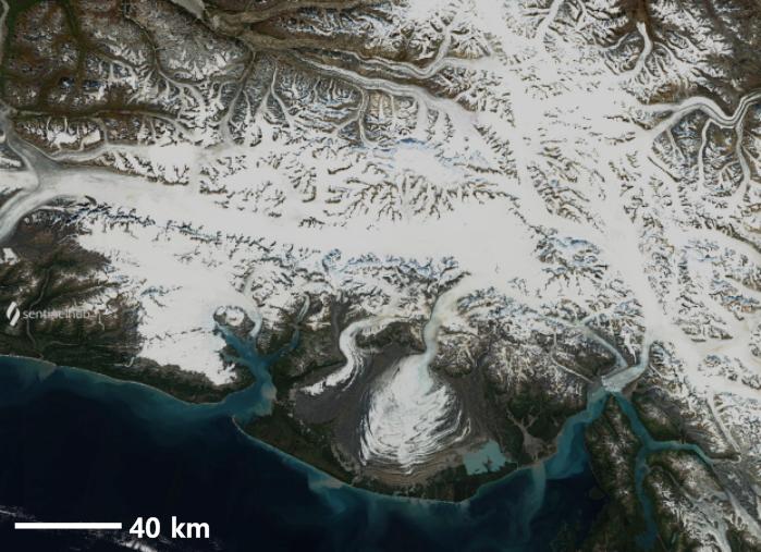 Classificazione glaciazioni - Ardito Desio - glaciazione alaskiana - ghiacciaio malaspina