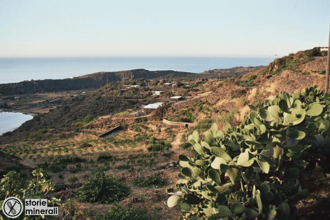 Pantelleria - Paesaggio - Agricoltura